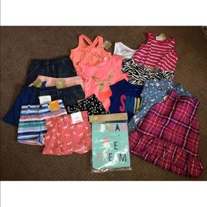 17 piece NWT Baby girls clothes lot
